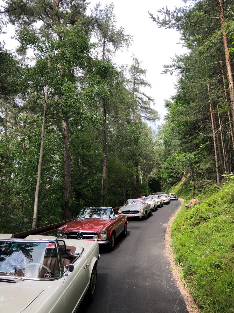 Wald, Straße, Oldtimer fahren hintereinander