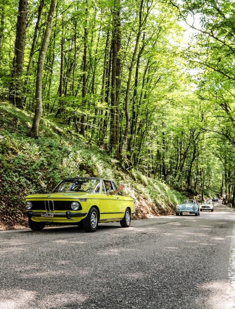 Autos fahren im Wald